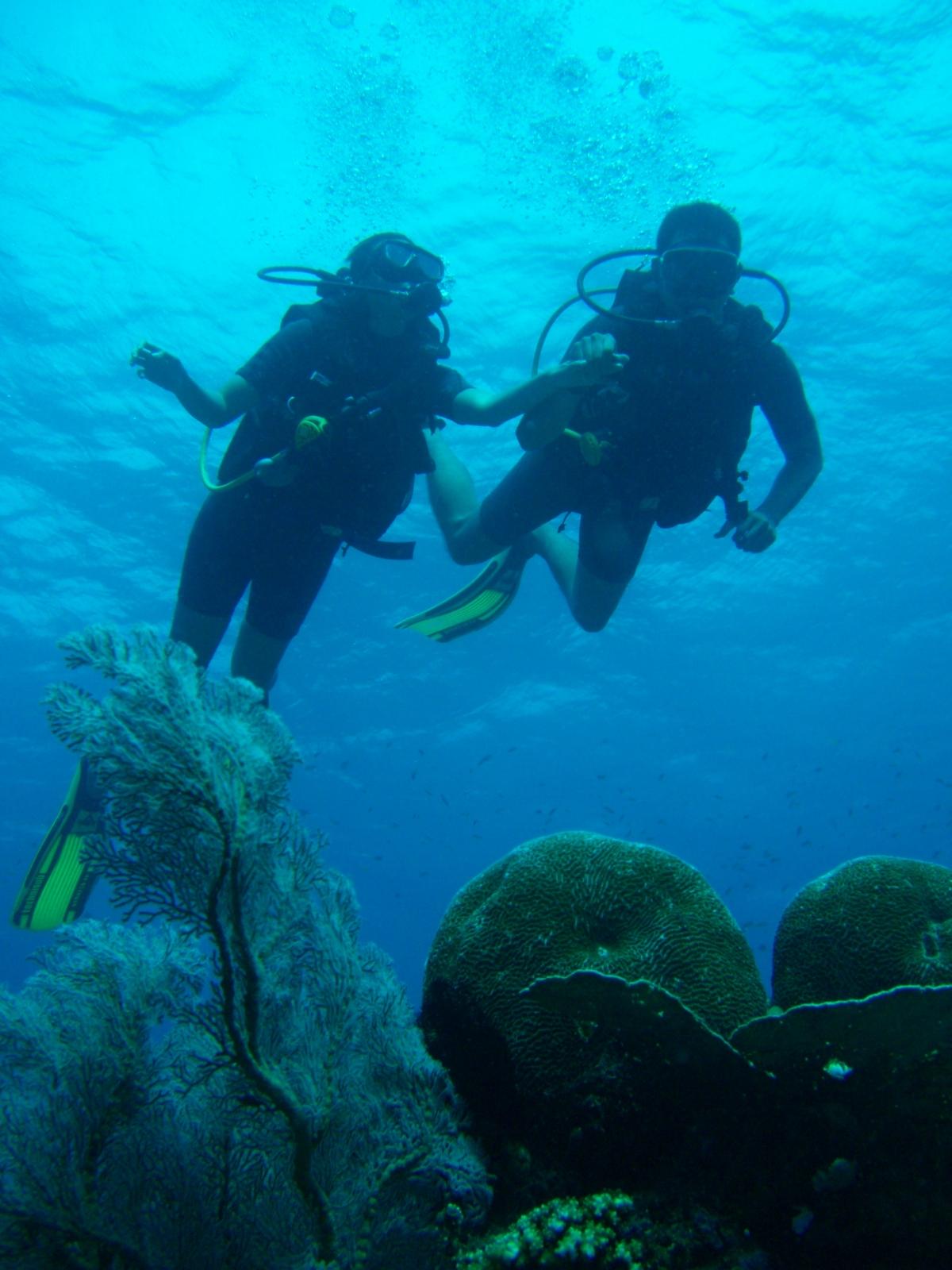 #Trip : Dream Divers at GiliTrawangan